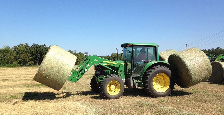 how to grow and harvest coastal bermuda hay